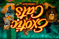First casino промокод